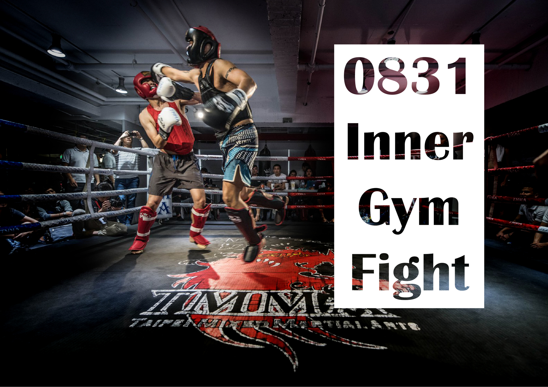 TMMA Inner gym Fight competition